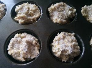 muffins close up pre bake